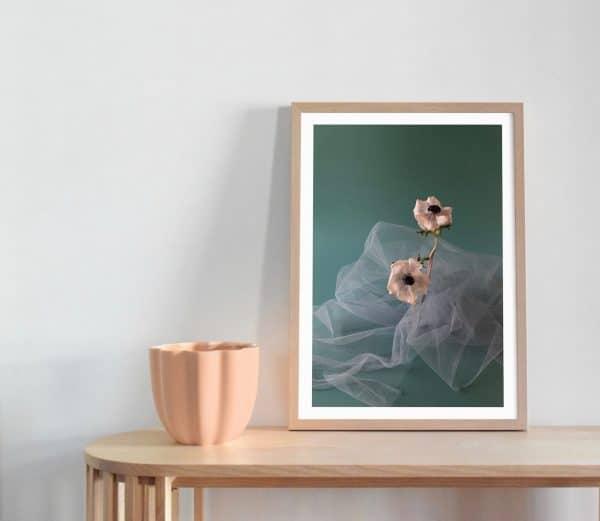 Anemone Flower Art Print