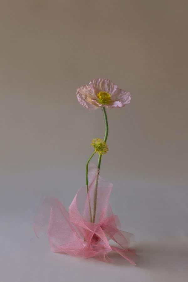 Poppy Flower Print by Rainy Sunday