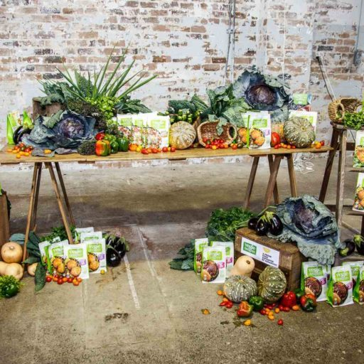 Sydney event stylists from Rainy Sunday styling the Vegie Delights Cook Book Launch